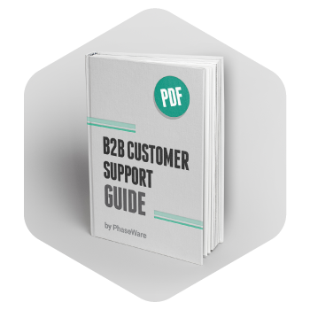 B2B Customer Support Guide
